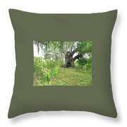 A Live Oak In Purgatory Throw Pillow