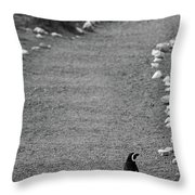 A Long Walk Home Throw Pillow