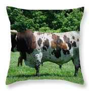 A Lot Of Bull Throw Pillow