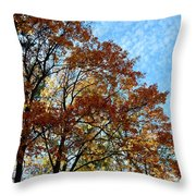 A Magnificent Fall Day Throw Pillow
