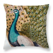 A Male Peacock In Full Display, 1763 Throw Pillow