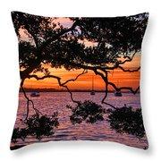 A Mangrove Morning Throw Pillow