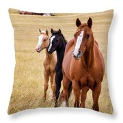 A Mare And Two Friends Throw Pillow