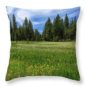 A Meadow In Lassen County Throw Pillow