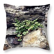 A Medieval Town Wall Throw Pillow