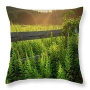 A Midsummer's Morn - Misty Sunrise Over Connecticut Meadow Throw Pillow