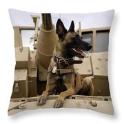 A Military Working Dog Sits On A U.s Throw Pillow