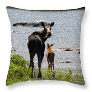A Mom And Her Baby Throw Pillow