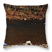 A Moment By The Water Throw Pillow
