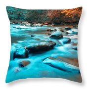 A Moment In The Great Smoky Mountains Throw Pillow by Rich Leighton