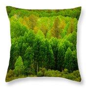 A Moment Of Green Throw Pillow