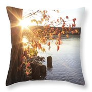 A Moment Of Pause Throw Pillow