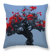 A Moments Serenity Throw Pillow
