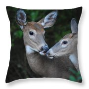 A Moms Touch Throw Pillow