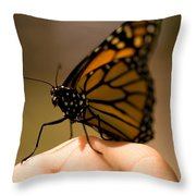 A Monarch Butterfly At The Butterfly Throw Pillow