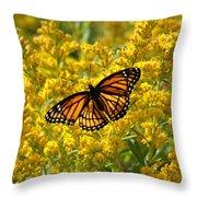 A Monarch World Throw Pillow