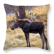 A Moose In Early Spring  Throw Pillow
