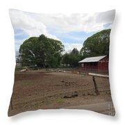 A Mormon Barn Throw Pillow