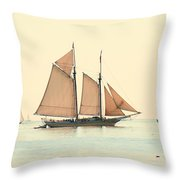 A Morning In Maine Throw Pillow