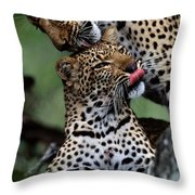 A Mother Leopard, Panthera Pardus Throw Pillow