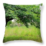 A Mulberry Summer Throw Pillow