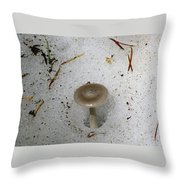 A Mushroom In Snow  Throw Pillow