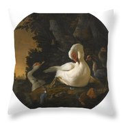 A Mute Swan A Goose And Other Fowl Throw Pillow
