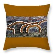 A Natural Landscape Throw Pillow