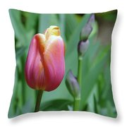 A New Tullip  Throw Pillow