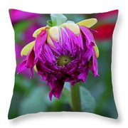 A New Tune Throw Pillow