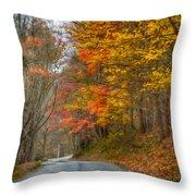 A Newport Autumn Throw Pillow