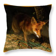 A Nocturne  Meeting With A Fox In The Woodland Throw Pillow
