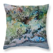A Northern Shoreline Throw Pillow