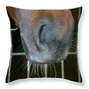 a Nose Knows Throw Pillow