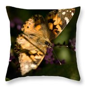 A Painted Lady Butterfly At The Lincoln Throw Pillow