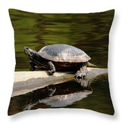 A Painted Reflection Throw Pillow