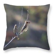 A Pair Of Cedar Waxwings Enjoying Lunch Throw Pillow