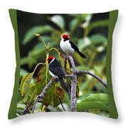 A Pair Of Redheads Throw Pillow