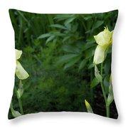 A Pair Of Yellow Bearded Iris 2 Throw Pillow