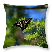 A Pale Swallowtail Throw Pillow