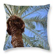 A Palm In The Sky Throw Pillow
