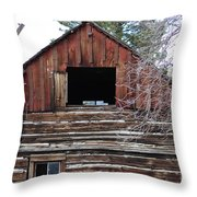 A Part Of History Throw Pillow
