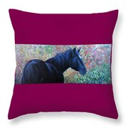 A Passing Glance From Hero Throw Pillow