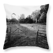 A Pasture Scene  Throw Pillow