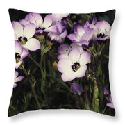 A Patch Of Wildflowers With White Throw Pillow