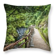 A Path Between Two Waters Throw Pillow