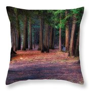 A Path Of Redwoods Throw Pillow
