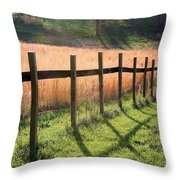 A Path Seldom Taken Throw Pillow