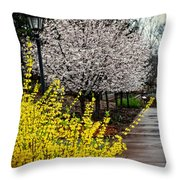 A Path Through The Garden Throw Pillow