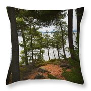 A Path To The Point Throw Pillow